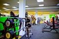 ALEX fitness Богатырский