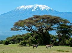 Экстримальный фитнес: восхождение на Килиманджаро