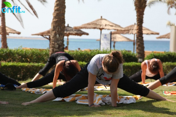 The Best of Onfit Active Holidays