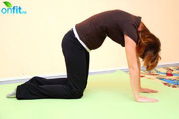 Выполнение упражнения для беременных в 1 триместре «Кошка»