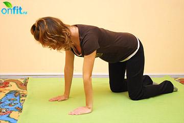 Исходное положение упражнения для беременных в 1-м триместре «Кошка»