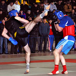 Первенство и Чемпионат России по ушу саньда
