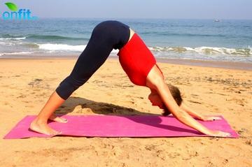 Йога для стройных ног – Собака мордой вниз