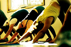 ������ � ��������� ���������� � ��������� ������� International Fitness School