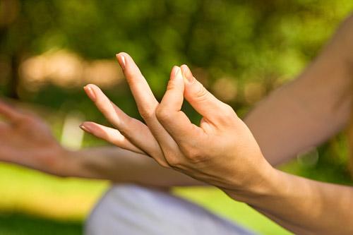 «Основы йога-терапии. Введение в Аюрведу». Курс сертифицированного обучения FPA