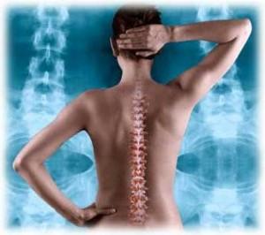 Семинар FPA «Особенности фитнес-тренировки при остеохондрозе позвоночника»