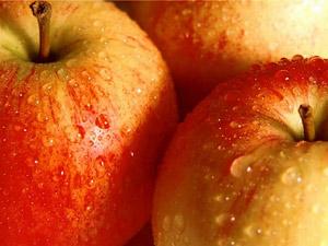 Главный секрет яблока заключается в гармоничном сочетании полезных веществ: витаминов, минералов, фруктовых кислот, сахаров, клетчатки и т.д.