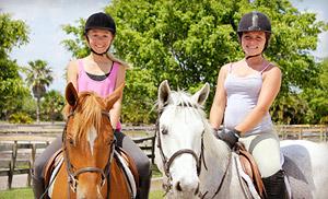 Конный спорт — это прекрасное занятие для настоящих любителей спорта, природы и животных, ценителей истории и традиций и отчаянных искателей приключений.
