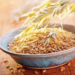 Овес — один из самых популярных зерновых культур. Он входит в основу мюсли.