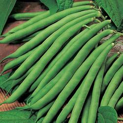 Бобовые — это семена бобовых растений, которые можно употреблять в пищу: фасоль, горох, чечевица и т. д.