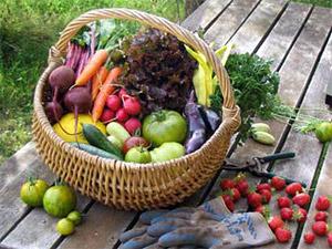 Экологичная и полезная еда