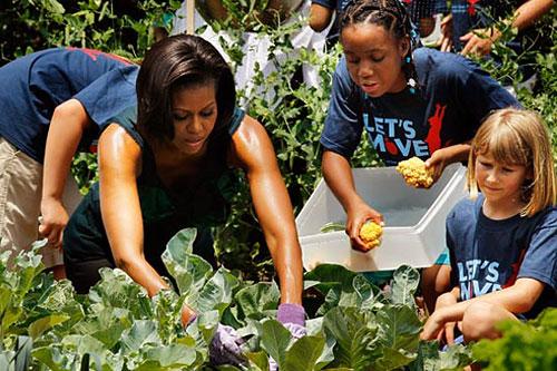 благодаря Мишель Обаме у Белого Дома США теперь есть несколько грядок с зеленью, которая используется для приготовления президентских блюд.