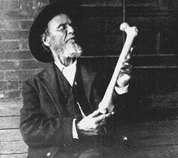 Основателем остеопатии является американский врач Эндрю Тейлор Стилл (1828-1917)