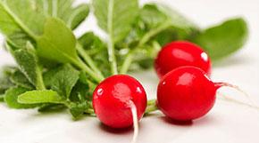 Редис — идеальный продукт июня.