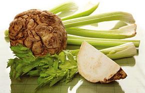 Корень сельдерея — весьма распространенное растение, его активно употребляют в пищу во всем мире.