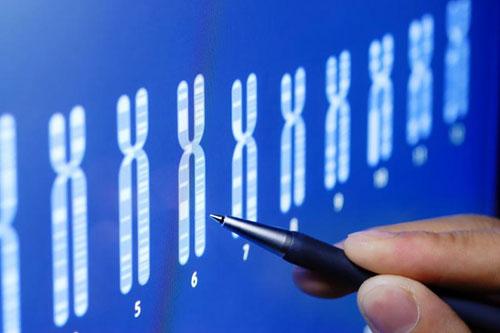 Ученые нашли ген, способствующий похудению