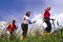 Международная встреча поклонников скандинавской ходьбы