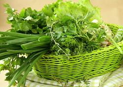И зелень, и шпинат, и листовой салат одинаково хорошо активизируют пищеварение, улучшают обмен веществ и помогают сбросить вес.
