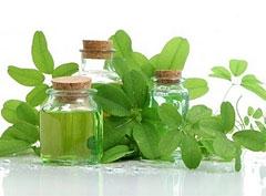 Тайские травы для похудения