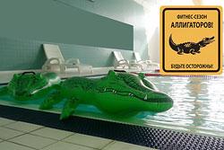 SOS! Крокодилы в фитнес-клубе «Аллигатор»