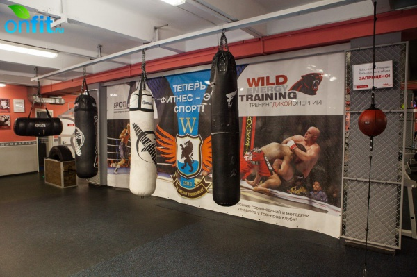 Фитнес-клуб Wild Athletic Club
