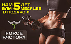 Force Factory: ��� 5 ��� � ��� 5 ������� � �������!