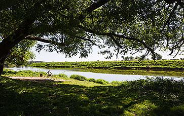 Территория парк-отеля «Яхонты» заповедник «Таруса»