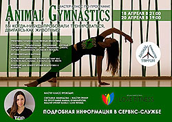 Мастер-класс Animal Gymnastics