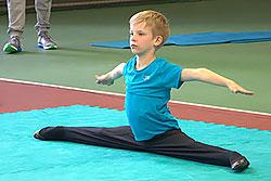 Кубок «ДОН-Спорт» по спортивной акробатике и художественной гимнастике