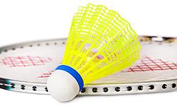 Командный турнир по бадминтону среди фитнес-клубов