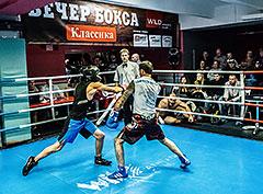 Открытый турнир по боксу на ринге спортивного клуба Wild Athletic