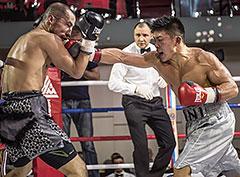 Бокс. Вечер профессиональных боев «Великолепная семерка»
