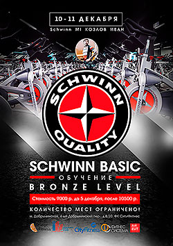 Schwinn Basic Bronze Level