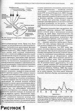 Достоверно установлен факт циклического, волнообразного характера секреции СТГ аденогипофизом в течение суток с максимальным всплеском секреции во время фазы медленного сна.