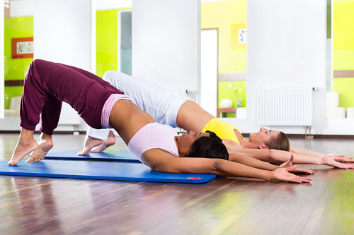 Аштанга-йога – «йога упражнений» подобна голове птицы. Она воспитывает дисциплину, организованность, устремленность и видение того, что необходимо для полета.