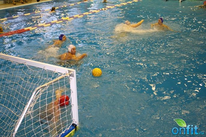 Чемпионат по водному поло среди фитнес-сетей Москвы