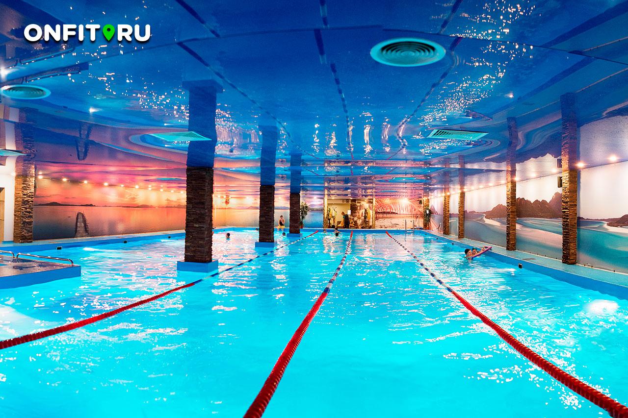 дельфин клуб в москве