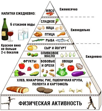 Белковая и углеводная пища